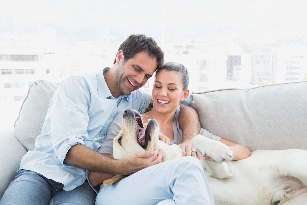 Happy pet parents petting their dog with Mindful Pet Parenting