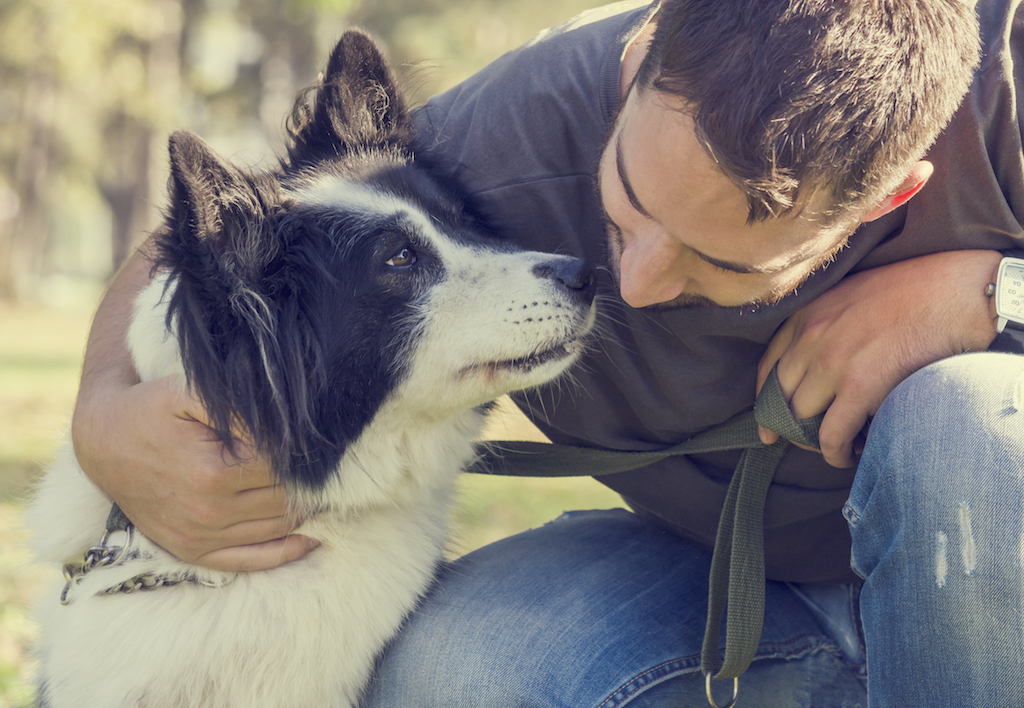 build bond with dog with mindful pet parenting